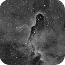 IC 1396A,                                Terry
