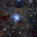 Iris Nebula,                                erq1