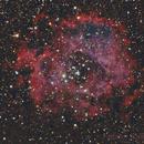 NGC 2237 - Rosseta Nebula,                                Fabian Rodriguez Frustaglia
