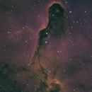 IC1396 Elephant's Trunk in HaHSO,                                Greg Harp