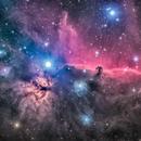 Horsehead Nebula (IC434),                                Miles Zhou