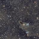 Terror From The Abyss - Dark Shark Nebula & LDN 1251,                                Carlo_Folli