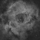 NGC 2244 Rosette nebula in Ha,                                  Jens Zippel