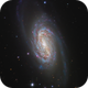 Messier's Missed Galaxy - NGC 2903,                                Kevin Morefield