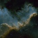 Cygnus Wall,                                Brian Blau