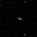 M106, NGC 4217, NGC 4248 & NGC 4220 & More,                                Phobos226