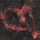 IC 1805 Heart Nebula,                                Paul May