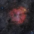 IC1396 - Elephant Trunk,                                Bill Mark