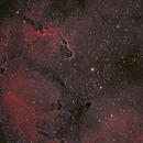 IC1396 in Ha & Oiii,                                Adam T.