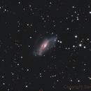 NGC 2146,                                Samara