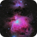 Messier 42 - The Orion Nebula  LRGB,                                Paul Borchardt