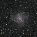 IC 342,                                Eric Walden