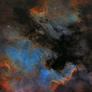 NGC 7000,                                Eric COUSTAL ( F5...