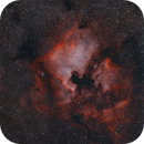 NGC7000 and friends in Cygnus,                                kribba