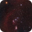Orion wide field,                                Paolo Demaria
