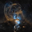 NGC3576 | Statue of Liberty Nebula,                                Joe Nidd