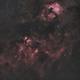 Cygnus Ha RGB,                                Michael Kohl