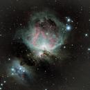Orion M42,                                Peter Kestel