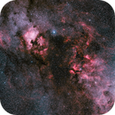 Cygnus Widefield,                                Nathan Campbell
