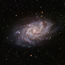 M33 of course,                                John Favalessa