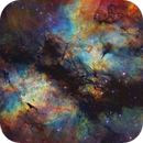 IC1318 - A Colorful Butterfly,                                Alan Pham