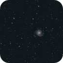 M74,                                Jammie Thouin