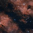 The Gama Cygni Nebula,                                Alex Roberts