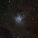 Iris Nebula,                                Kevin Morefield