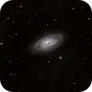 M64 Black Eye Galaxy,                                Jaysastrobin