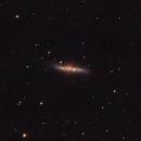 M82 Cigar Galaxy,                                TimothyTim