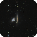 NGC 4298 and NGC 4302,                                Sascha Schueller