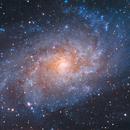 """M33 """"Galassia nel Triangolo"""",                                Carlo Caligiuri"""