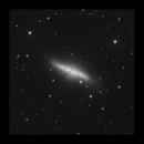 M82 - Cigar Galaxy (Luminance),                                Serge Théberge