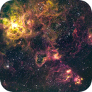 Tarantula Nebula - NGC 2070,                                Bruce Rohrlach