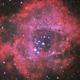 NGC 2246,                                Alexander Laue