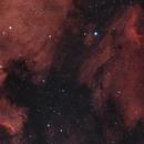 NGC7000 North American Nebula and Pelican Nebula,                                Monkeybird747