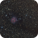 IC5146,                                Audrius