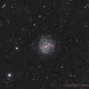 Messier 83,                                Gerson Pinto