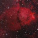 IC1795 Fish Head Nebula,                                Serge