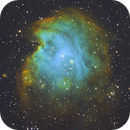 Monkey Head, NGC 2174,                                Pat_Bourque
