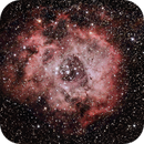 Rosette Nebula,                                PSYDOC