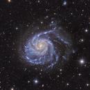 M 101 Pinwheel Galaxy LRGB,                                Thomas Hellwing