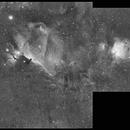 B33 - Ngc2023 - M43 - M42 - Mosaic,                                Salvopa