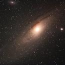 The Andromeda galaxy M31 & M110,                                Peter Retzer