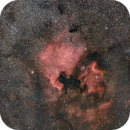 North America & Pelican Nebula - NGC 7000 & IC 5070,                                Giambattista Rizzo
