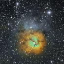 M20, Trifid Nebula, LSHO, 27-29 May 2020,                                David Dearden
