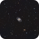 NGC1365,                                Gordon Hansen