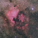 NGC 7000 / Caldwell 20 (North America Nebula),                                Rodrigo