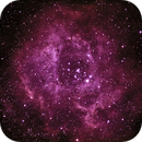Rosette Nebula,                                Muhammad Ali