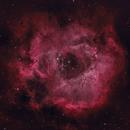 The Rosette Nebula in HOO,                                Arun H.
